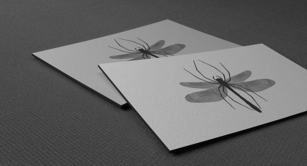Επαγγελματικές κάρτες με μαγνήτη (μαγνητάκια ψυγείου)